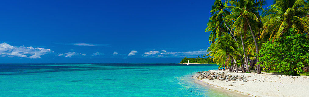 A pristine Fijian beach with crystal clear water and white sand and palm trees.